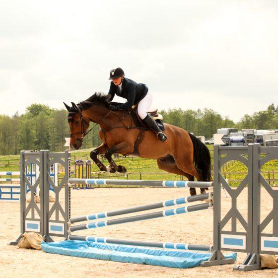 E.R Häst